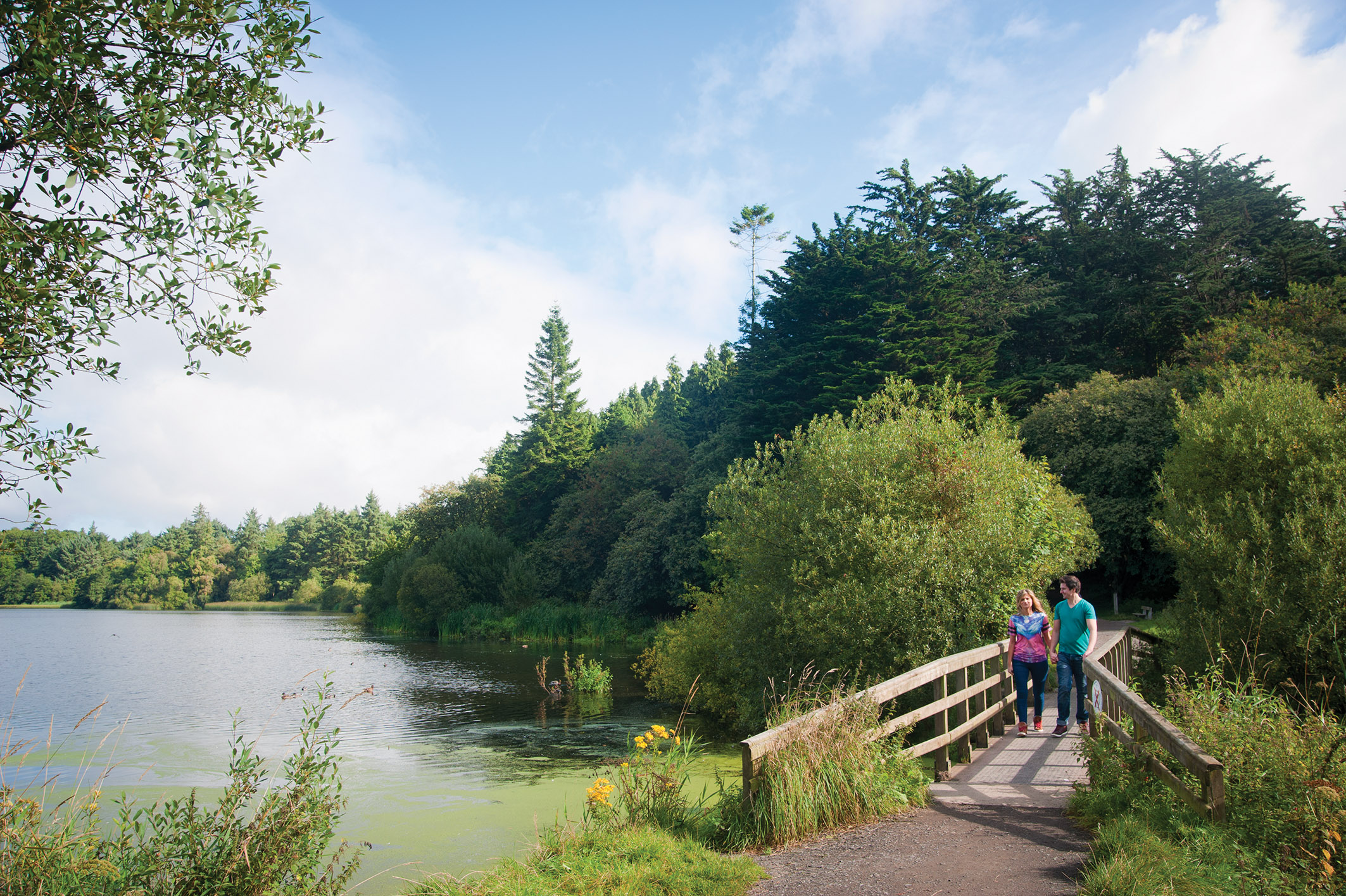 Man and woman walking on wooden bridge beside lake